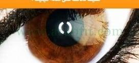 صحة عينيك هي جزء مهم من صحتك : كيف تحافظ على صحة عينيك ؟