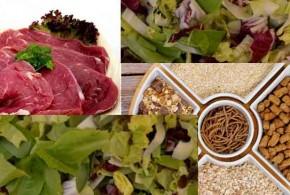 أغذية تفيدك فى التخلص من فقر الدم او الأنيميا
