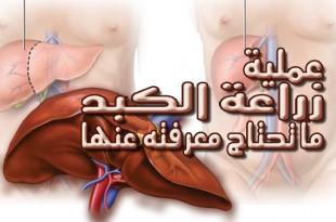 عمليات زراعة الكبد .. ما تحتاج معرفته عنها